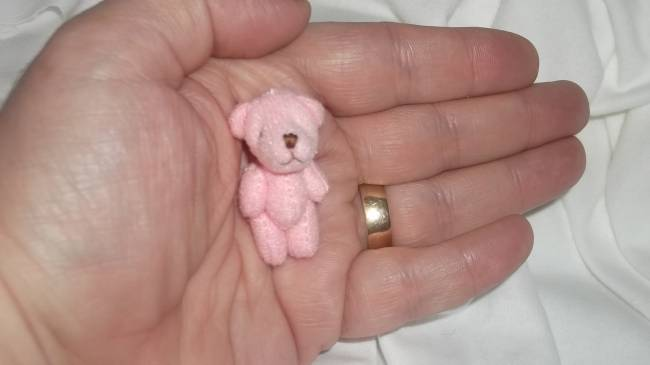 Smallest Teddy bears  4cm Baby Stillbirth PENNY Pink teddy memory box Teddies