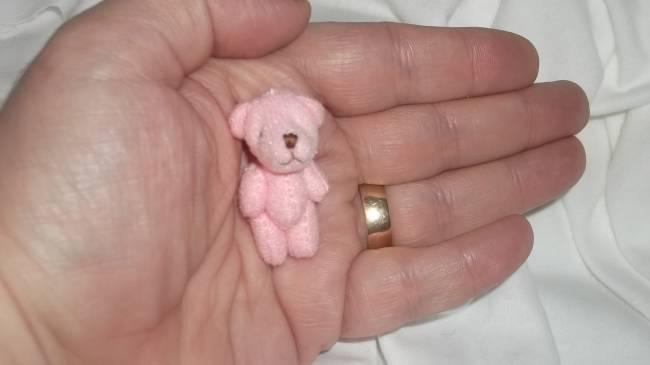 Smallest Teddy bears  4cm Baby Stillbirth PENNY Pink teddy memory box Teddies