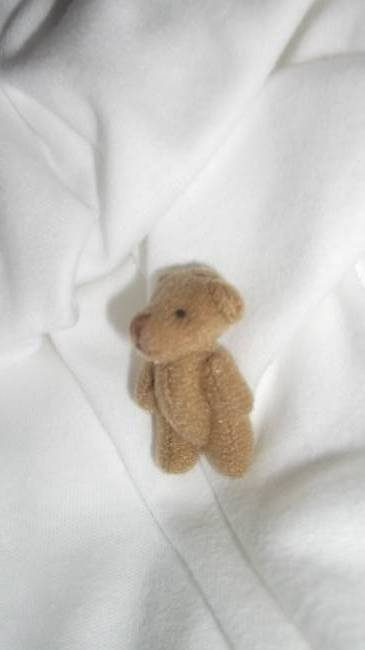 Tiny TEDDIES memory box baby miscarriage 4cm MUFFIN Brown teddy