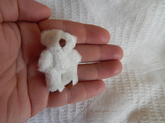 Baby loss white teddy bears memory box 4.5cm tiniest sizes WHISPER