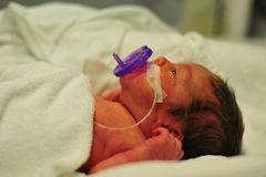 premature baby dummy