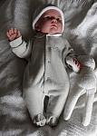 premature baby wear Sleepsuit EARLY BIRD 3-5lb pearl grey
