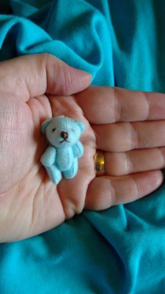 teddy bears teeny tiny memory box bears LIGHT BLUE Teddy Splodge