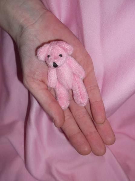 small teddy, teddy bear Pink HAPPY HANNAH 7cm memory box teddybear