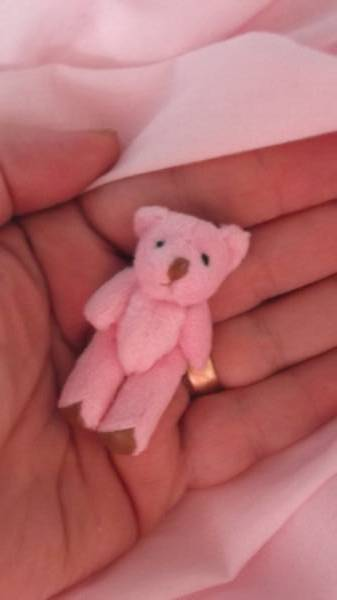 bereavement baby memory box teddy bears tiny cute DINKY DOO teddy bear 5cm
